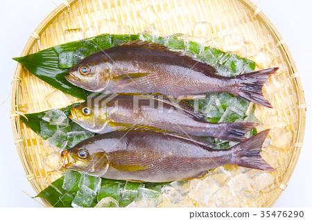 Isaki Foodstuff - Stock Photo [35476290] - PIXTA