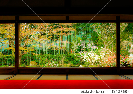 Japanese Garden with a View 35482605