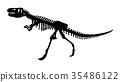 Skeleton of Siamotyrannus isanensis  35486122
