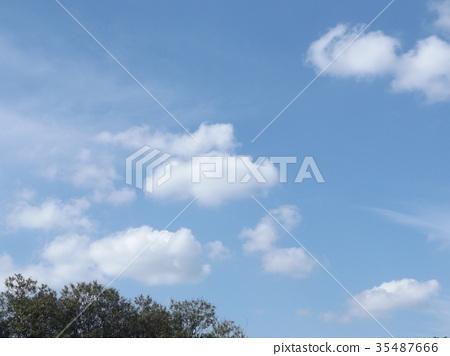 푸른 하늘, 파란 하늘, 청색 35487666