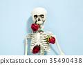 rose skeleton 35490438
