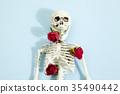 rose skeleton 35490442