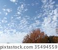 藍天和白色雲彩在秋天Yatsu潮汐公園 35494559