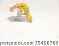 爬行动物 爬虫类的 蝾螈 35496760