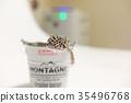 豹子mont牡蠣蛾豹子gekko爬行動物 35496768