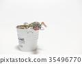 豹子mont牡蠣蛾豹子gekko爬行動物 35496770