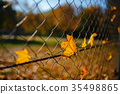 Metallic net-shaped fence from wire with autumn  35498865