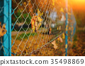 Close up metallic net-shaped fence from wire  35498869