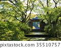 단풍나무, 단풍 나무, 산문 35510757