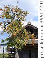 감나무가있는 풍경 35512291