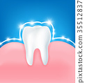 Clean and strong  white tooth with glittering brig 35512837