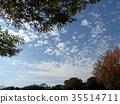 藍天和白色雲彩在秋天Yatsu潮汐公園 35514711