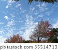 藍天和白色雲彩在秋天Yatsu潮汐公園 35514713