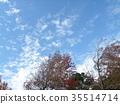 藍天和白色雲彩在秋天Yatsu潮汐公園 35514714