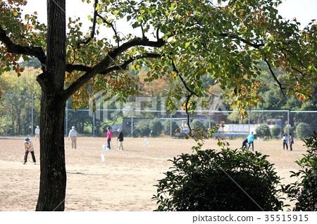 公園 秋季運動 體育秋天 35515915