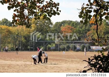 公園 秋季運動 體育秋天 35515916