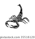 Aggressive black and white Scorpion for tattoos 35516120