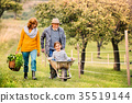 Senior couple with grandaughter gardening in the 35519144