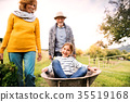 Senior couple with grandaughter gardening in the 35519168