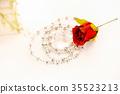 Rose - Flower, Picture Frame, Heart Shape 35523213
