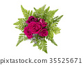 rose on a white colored background 35525671