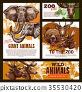 Vector zoo sketch poster wild giant animals 35530420