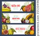 Vector banners of tropical exotic fruits harvest 35530496
