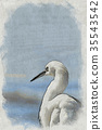 Woodblock Printing; The Snowy Egret Looking  35543542