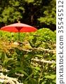 Wild hydrangea and the umbrella 35545512