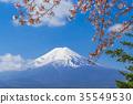 가와구치 코 후지산 벚꽃 35549530