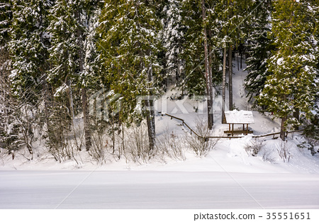 alcove in snowy spruce forest 35551651
