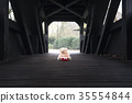 Stuffed bear toy and gift on a bridge 35554844