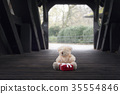 Teddy bear and gift in a wooden tunnel 35554846