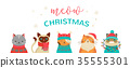 Merry Christmas greeting card and banner with cute cats characters, vector collection. 35555301