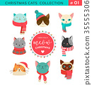 Merry Christmas greetings with cute cats characters, vector collection. 35555306