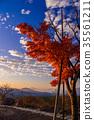 【山梨县】Yatsugatake,Akarimori天文台,秋天 35561211
