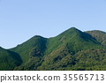mountain, wood, forest 35565713