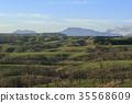 hill, spring, fresh verdure 35568609