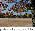 공원, 파크, 가을 35571162