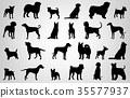 Dog breeds silhouettes. Dog icons collection 35577937