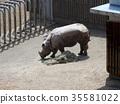 犀牛在籬笆上 35581022