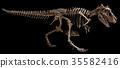 Tyrannosaurus Rex skeleton  35582416