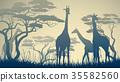 動物 長頸鹿 野生生物 35582560