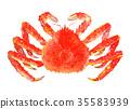 红王蟹 水彩 水彩画 35583939