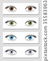 Eye Color Chart Brown Green Blue Gray 35583963