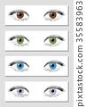 Eye Color Chart Brown Green Blue Gray 35583963