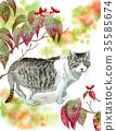 cat, pussy, watercolour 35585674