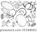水果 食物 食品 35588663