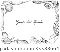 Hand Drawn of Gourd and Squash Fruits Frame 35588664