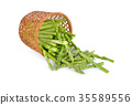 portion cut fresh asparagus on white background 35589556